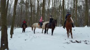 Zimowe wyjazdy do lasu